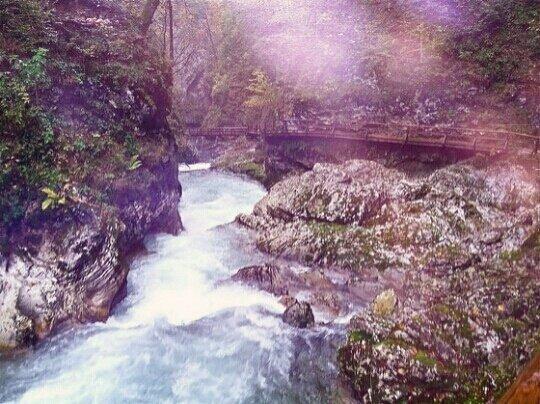 slovenia vintgar gorge2