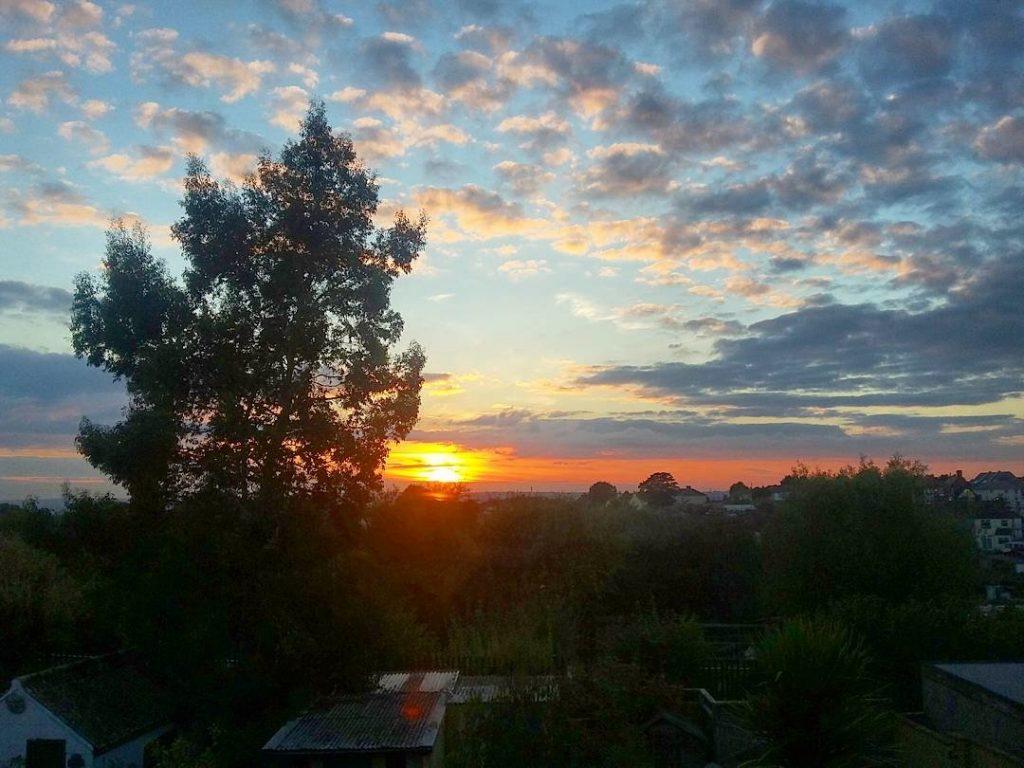 sunset-housesitting